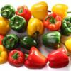 Ценные свойства болгарского перца