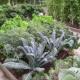 Огородные грядки – легко и без рутины