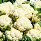 Калорийность цветной капусты